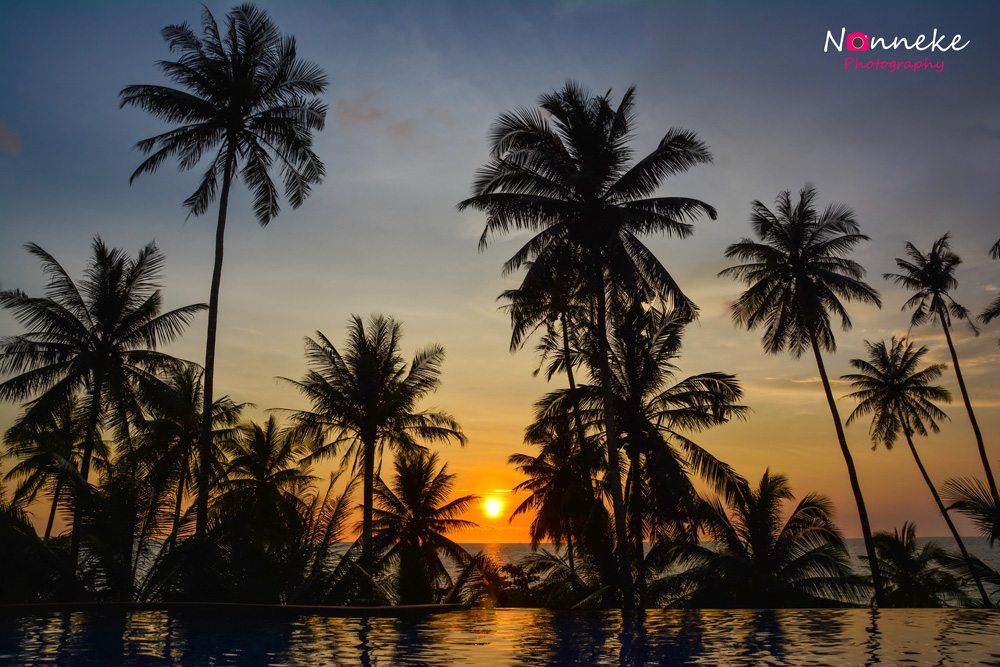 Infinity pool with palm trees during sunset at Koh Kood