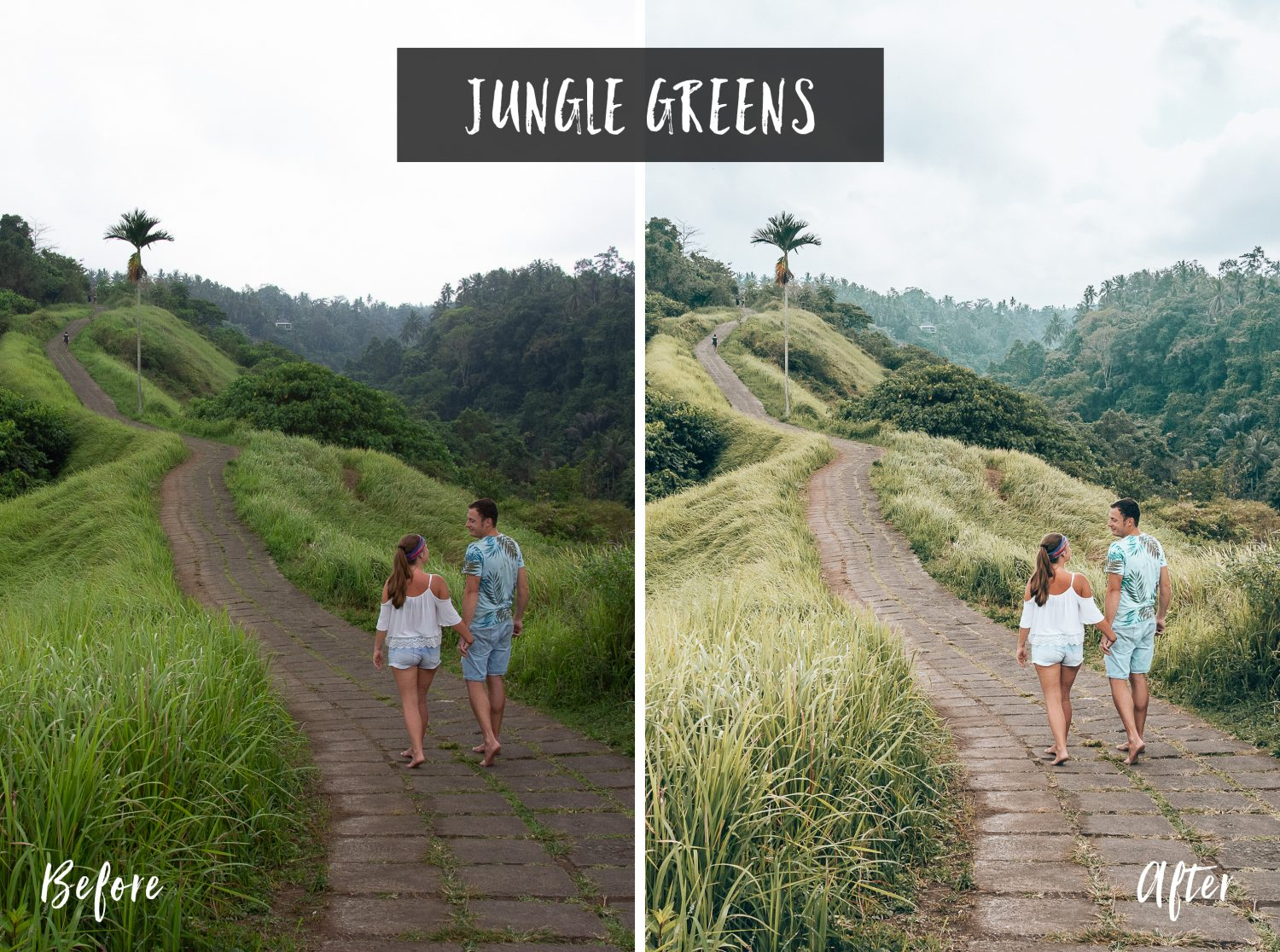 Jungle Greens | Flip Flop Wanderers Presets