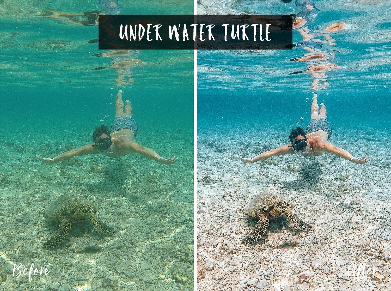 Under Water Turtle | Flip Flop Wanderers Presets