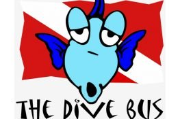 The Dive Bus Curacao vierkant